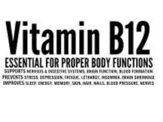 Vegetarians and Vitamin B12
